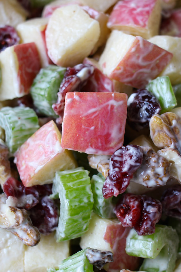 Chunks of Fuji apples with celery, walnuts and cranberries that have been lightly coated with a yogurt dressing