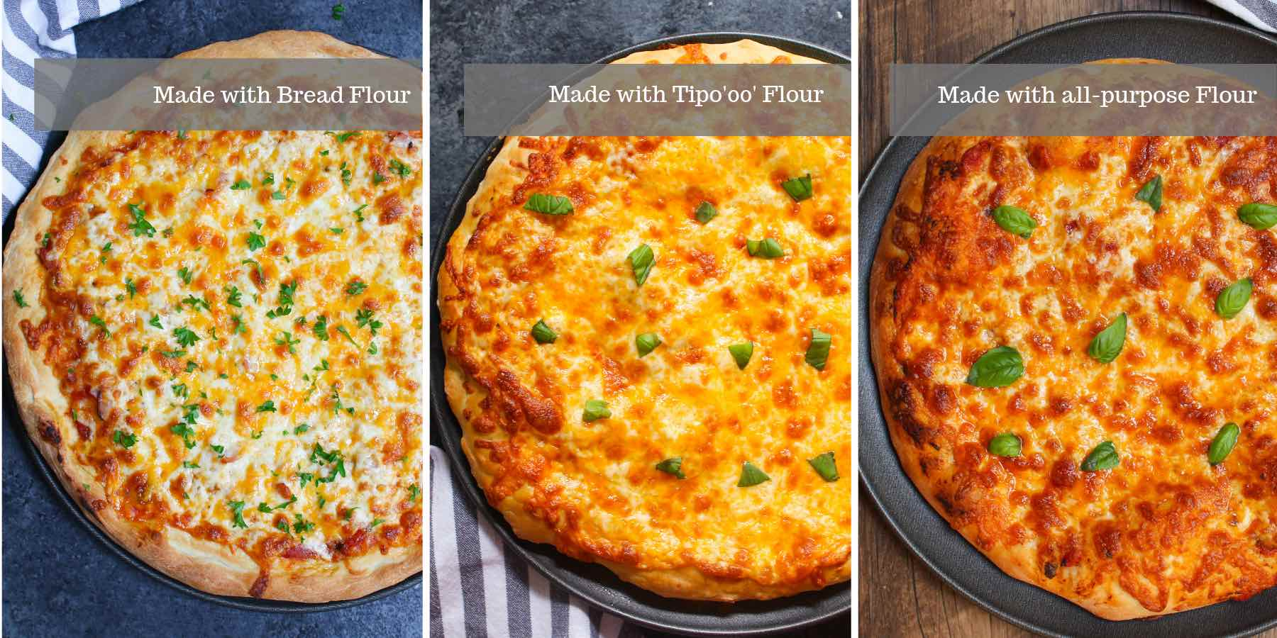 Comparison of pizzas made with 3 different types of flour: from left to right are dough made with bread flour, Tipo 'oo' and all-purpose flour