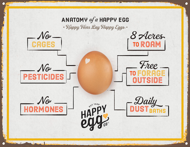 This infographic shows the production process for making free range Happy Eggs