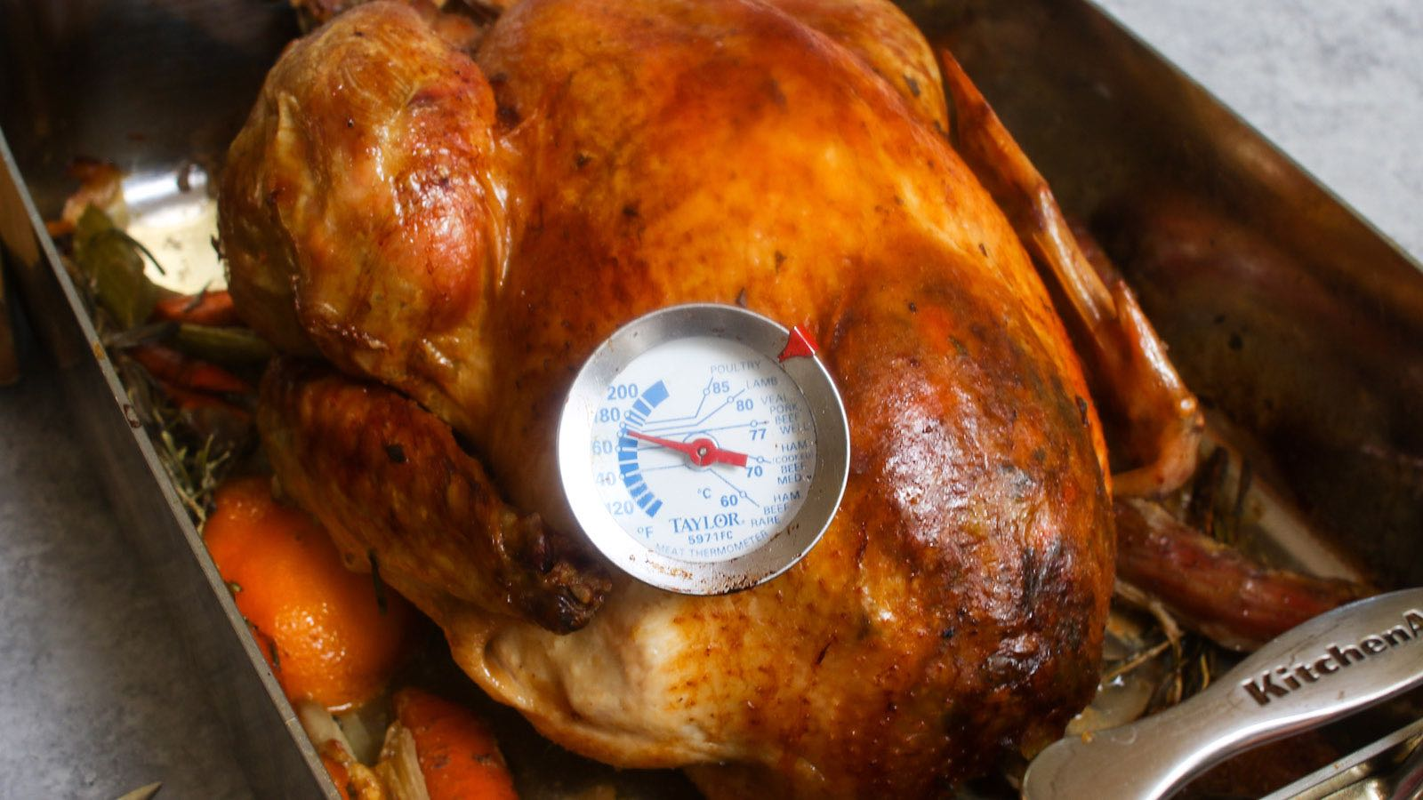Meat thermometer inserted into a whole roast turkey reading 170 degrees F, indicating the turkey is done