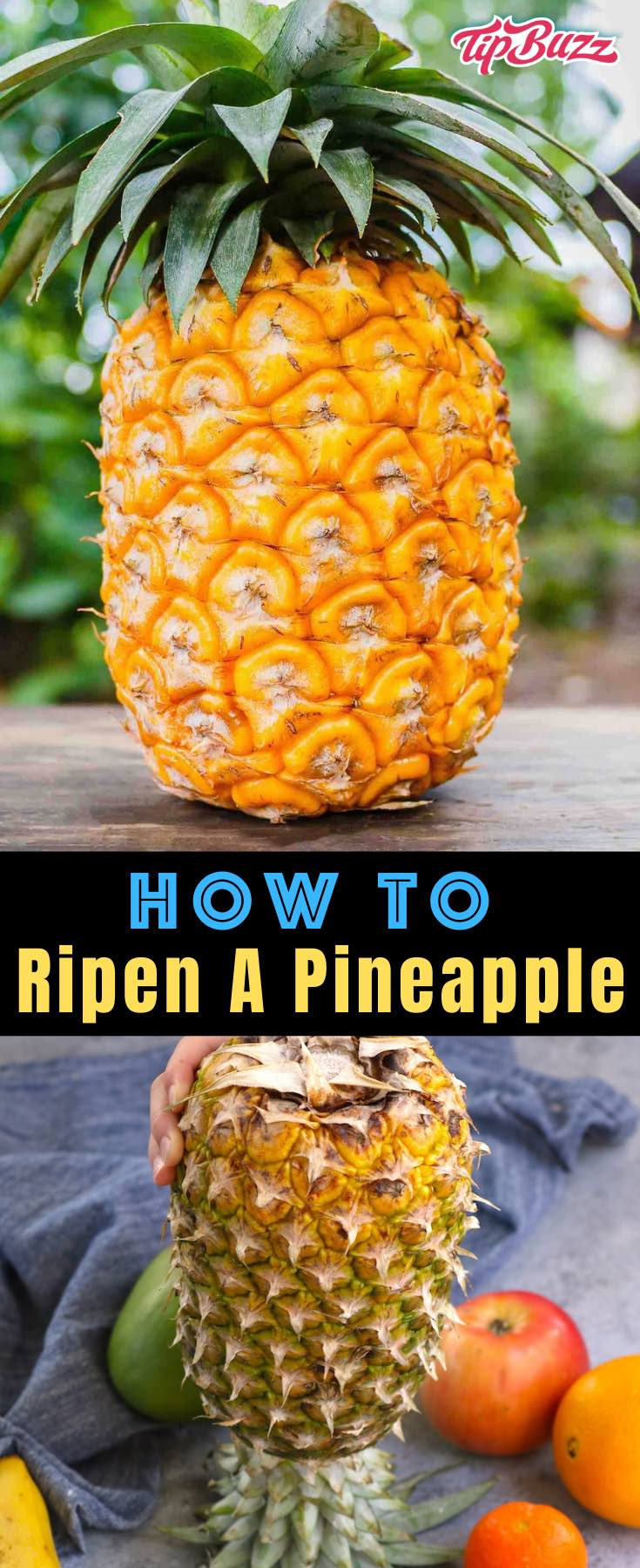 How to Ripen a Pineapple - learn all the tips and tricks to get a ripe pineapple faster! #pineapple