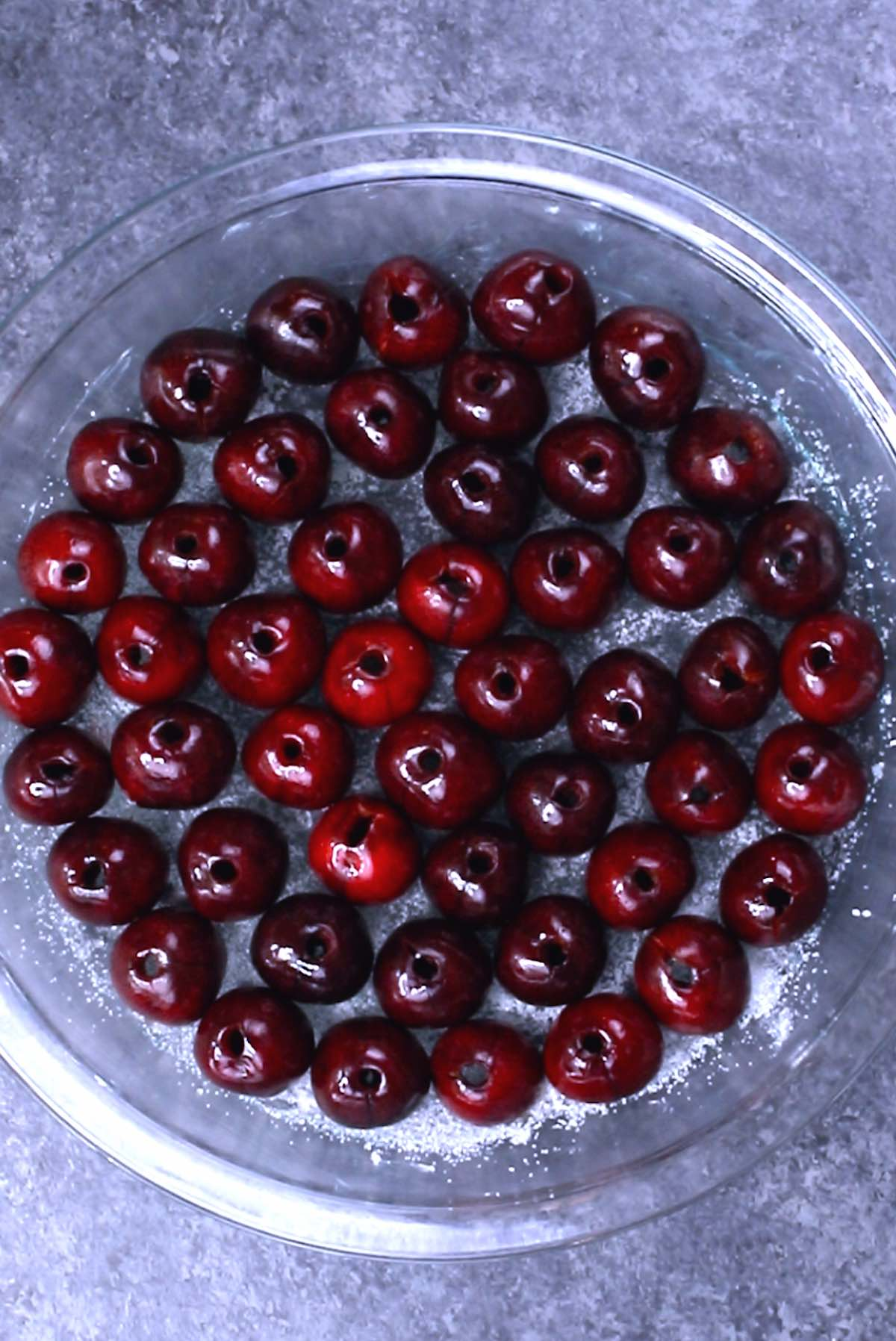 Overhead view of a greased pie plate filled with a single layer of pitted cherries when making clafoutis