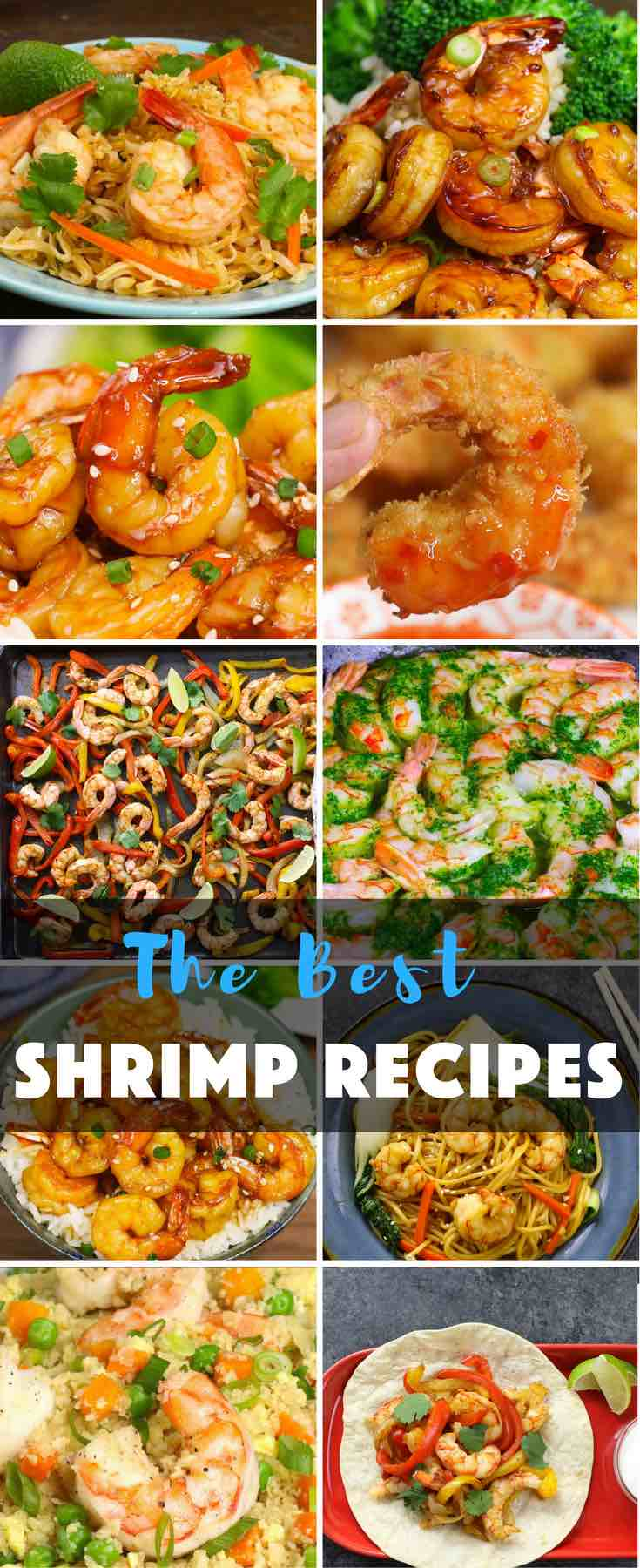 This collection of the most popular shrimp recipes helps you to get the easy and restaurant-quality dinner ready within 15 to 30 minutes. From taking them out from freezer to getting the dinner ready, it takes much less time than most other recipes. Best of all, they are so delicious.